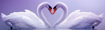 Valentine's Day - Valentine's Day History, Facts and Activities
