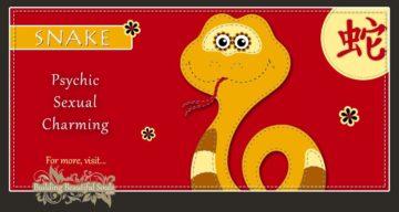 Chinese Zodiac Snake | Year of the Snake