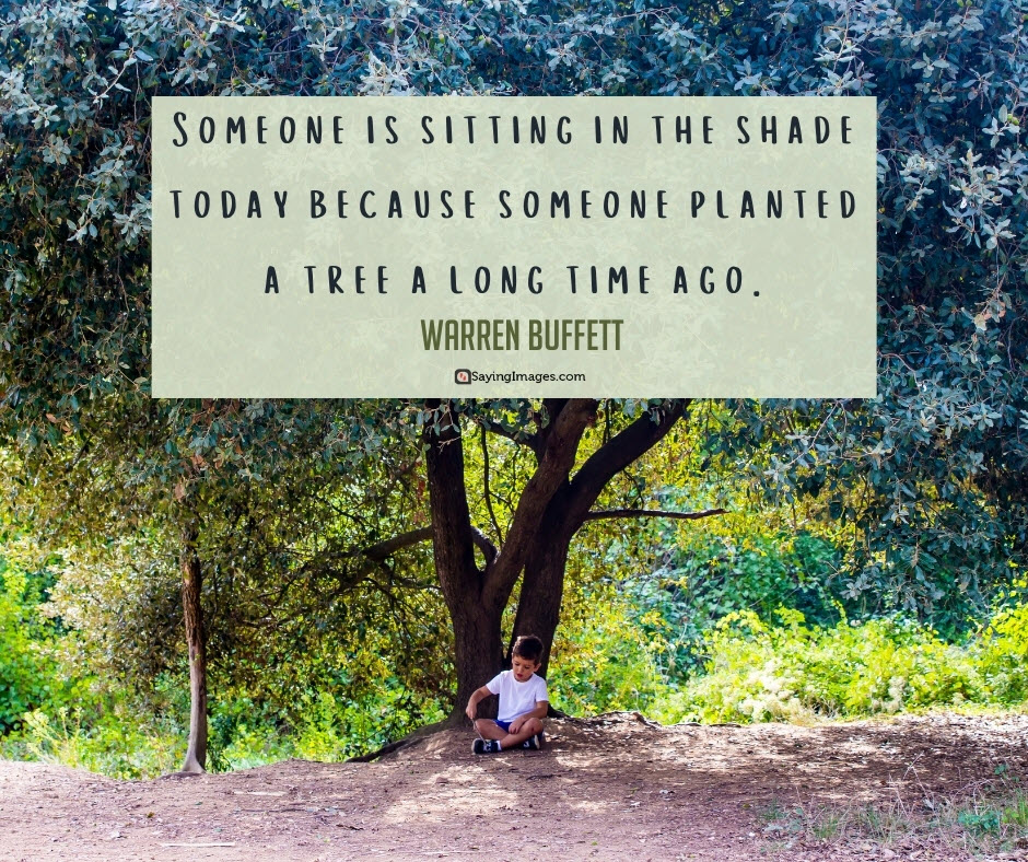 tree shade quotes